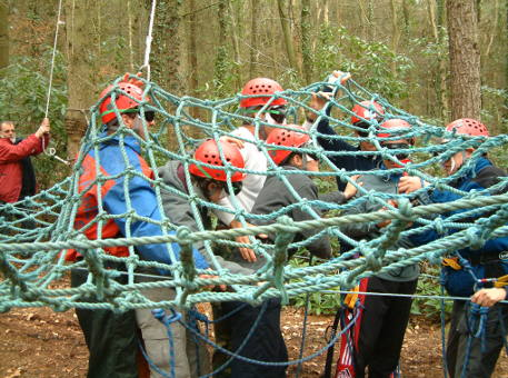 New Forest Experience corporate team building event