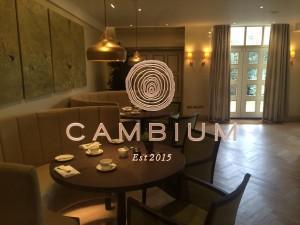 Cambium Restaurant Careys Manor